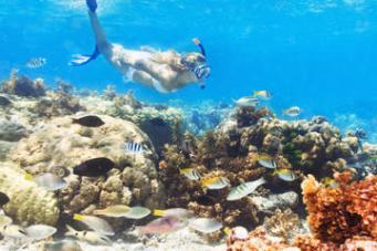 136578_Punta Cana_Marinarium_1547